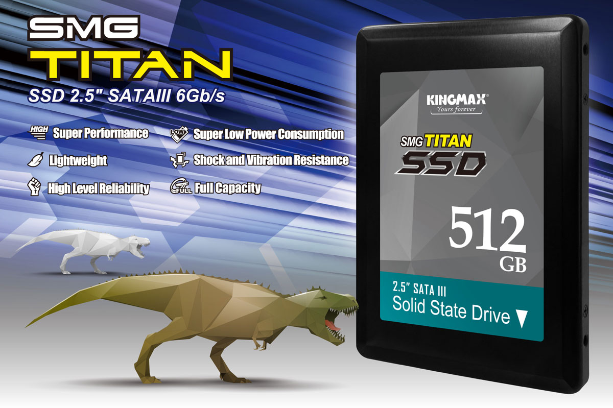 Kingmax-SSD-SMG-PR