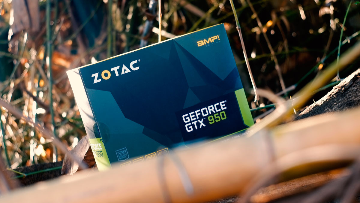 ZOTAC-GTX-950-AMP-Review-1